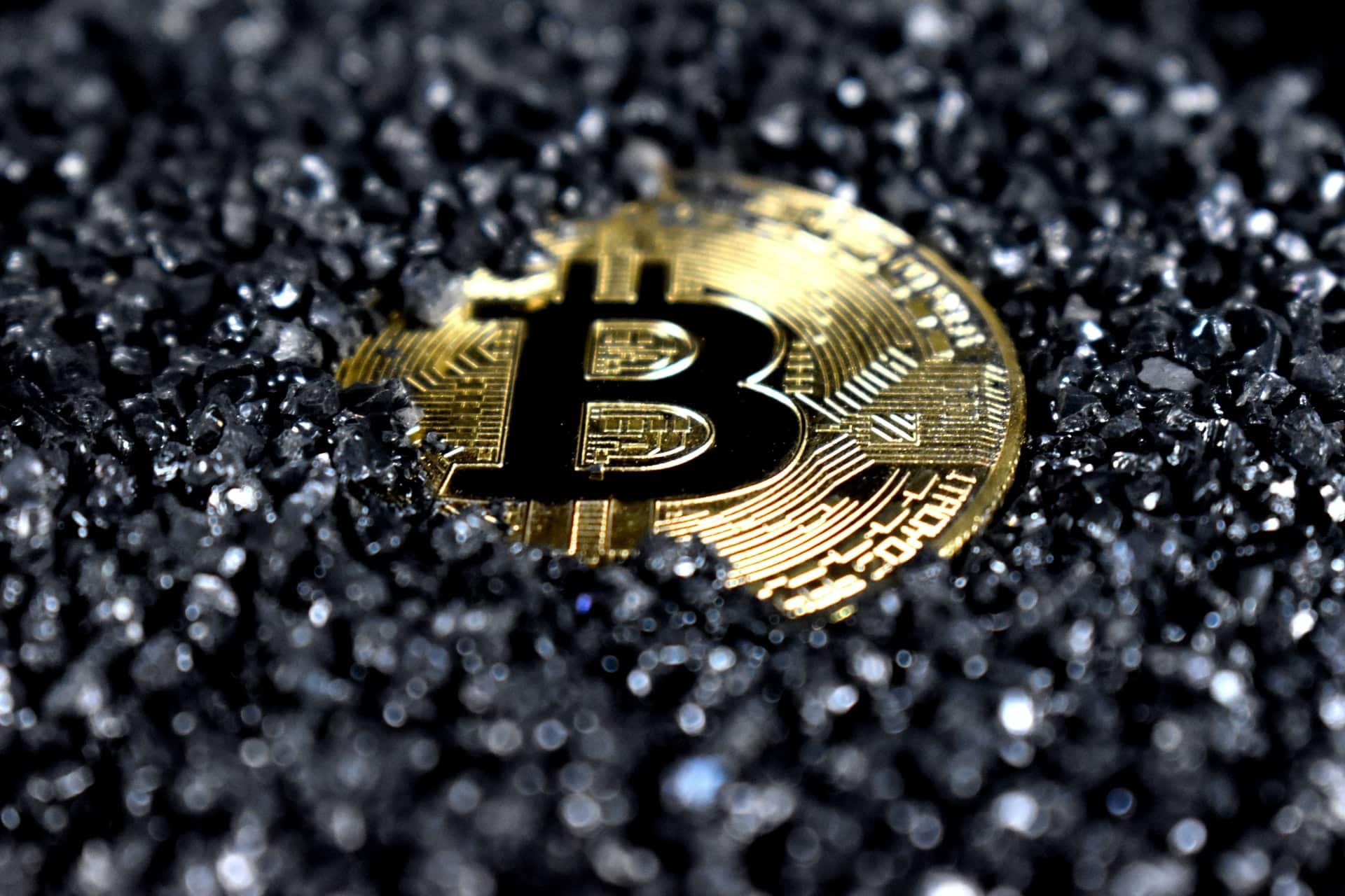 NFT Crypto Future Casinos Header Image