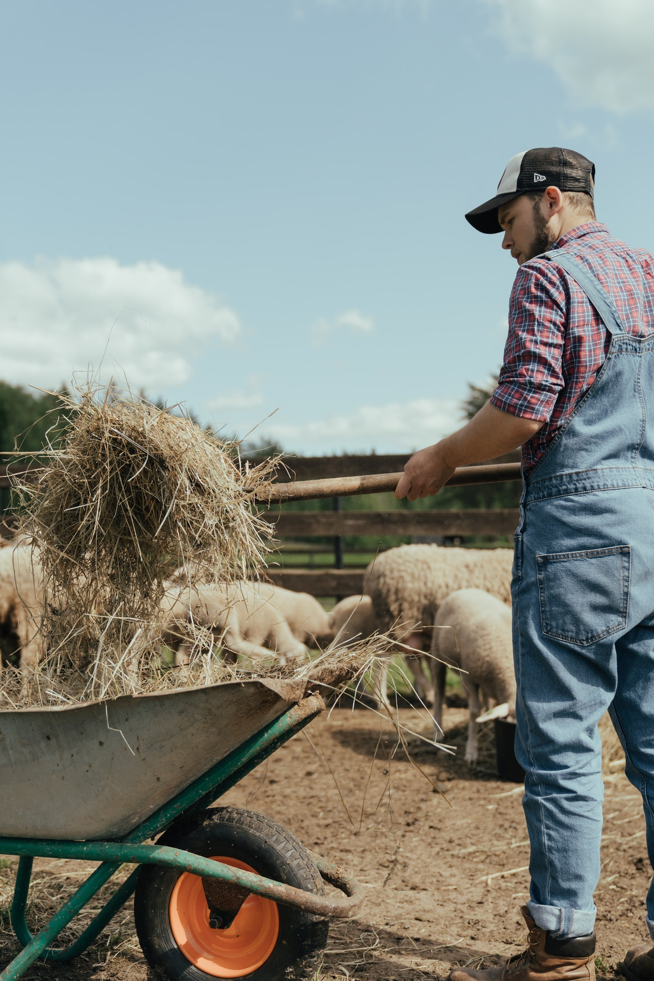 Farming Business Management Tips Article Image