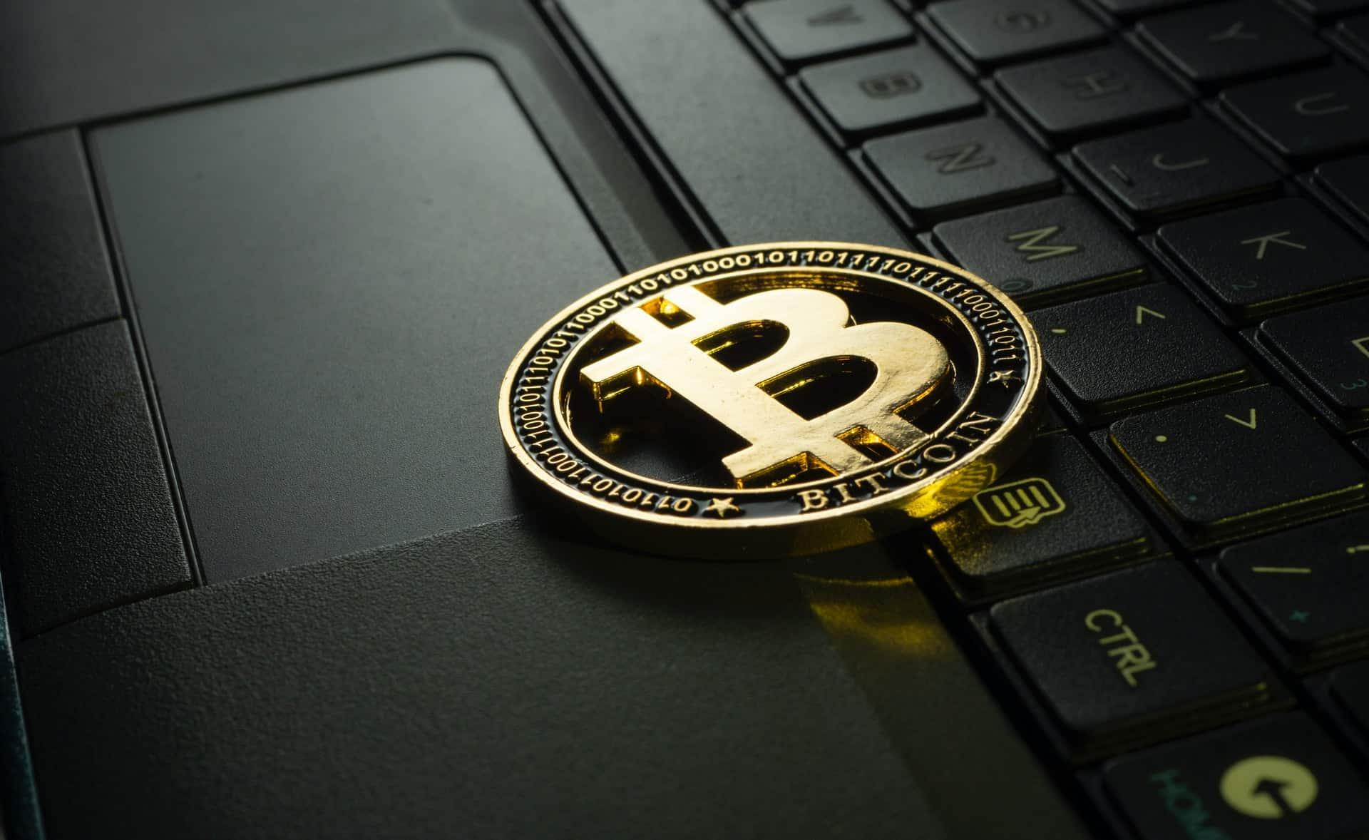 Protect Crypto Portfolio Header Image