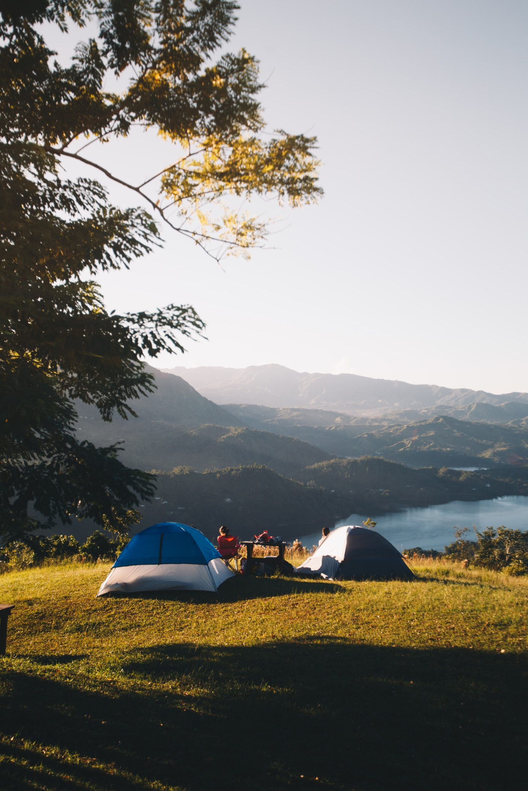 Best Camping Generators Article Image